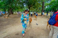 Nara Japan - Juli 26, 2017: Oidentifierat folk runt om lösa deers i Nara, Japan Nara är en viktig turismdestination Royaltyfria Foton