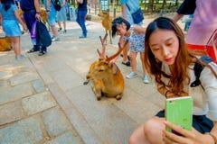 Nara Japan - Juli 26, 2017: Stäng sig upp av den oidentifierade kvinnan som tar en selfie av en lös hjort i Nara, Japan Nara är a Royaltyfri Fotografi