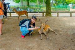 Nara Japan - Juli 26, 2017: Stäng sig upp av den oidentifierade kvinnan som tar en selfie av en lös hjort i Nara, Japan Nara är a Arkivbilder