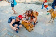 Nara Japan - Juli 26, 2017: Stäng sig upp av oidentifierade kvinnor som tar en selfie av en lös hjort i Nara, Japan Nara är a Royaltyfri Bild