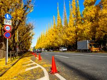 Nara, Japan - July 26, 2017: Beautiful view of autumn landscape, with some cars parked, with yellow autumn trees and. Leaves ,Colorful foliage in the Autumn Stock Photography