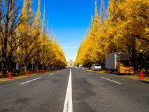 Nara, Japan - July 26, 2017: Beautiful view of autumn landscape, with some cars parked, with yellow autumn trees and. Leaves ,Colorful foliage in the Autumn Royalty Free Stock Images
