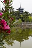 Nara, Japan -  May 30, 2017: View of the Five Storied Pagoda of Royalty Free Stock Photos