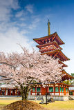 Nara, Japan Temple in the Spring Stock Photography
