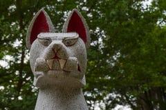 Nara Japonia, Maj, - 31, 2017: Zamyka up Kitsune, zwierzęcy opiekun Zdjęcie Royalty Free