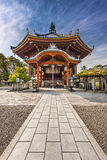Nara at Kofukuji Temple Royalty Free Stock Image