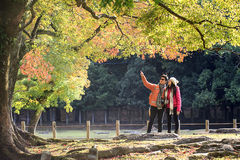 Nara is a major tourism destination Royalty Free Stock Photo