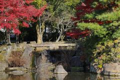 Autumn Laves at Hiroshima Central Park in Japan Stock Image