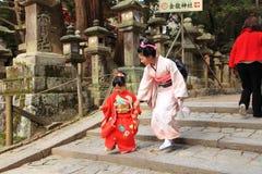 Nara Park, Japan stock afbeelding