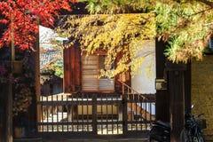 Nara Part bij daling Stock Afbeelding