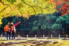 Nara Part bij daling Royalty-vrije Stock Foto's