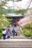 Nara tempel i vår Royaltyfri Foto