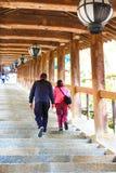 Nara tempel i vår Fotografering för Bildbyråer