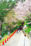 Nara temple in spring Royalty Free Stock Images