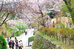 Nara temple in spring Stock Photo