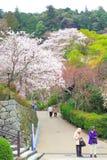 Nara temple in spring Stock Image