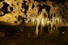 Naracoorte-Höhlen, Süd-Australien Stockbild