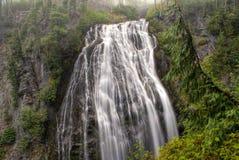 Narada Falls Stock Image