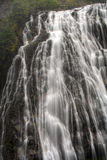 Narada Falls Stock Images