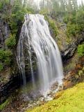Narada Falls Panorama Stock Photography