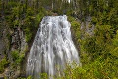 Naradadalingen van Onderstel Rainier National Park in WA-staat royalty-vrije stock foto's