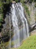 Narady FallsMount parka narodowego Dżdżysty stan washington Stany Zjednoczone obraz stock