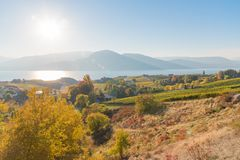 Naramata长凳酿酒厂、欧肯纳根湖和山在10月 图库摄影