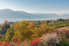 Naramata ławka, Okanagan jezioro i góra krajobraz z spadkiem, barwimy fotografia royalty free