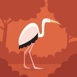Naranja blanca Forest Background del pájaro de la garza Fotos de archivo libres de regalías