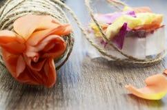 Naranja color de rosa y pétalos Fotografía de archivo libre de regalías