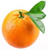 Naranja con las hojas aisladas en un fondo blanco Imagen de archivo