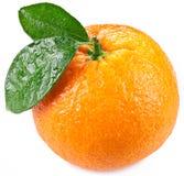 Naranja con las hojas aisladas en un fondo blanco Imagen de archivo libre de regalías