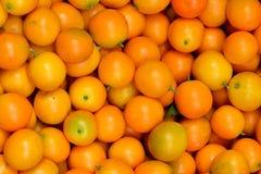 Naranja de Calamondin Fotografía de archivo libre de regalías