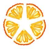 Naranja de la acuarela, mandarín, helado Diseño de impresión, etiqueta, menú, café, publicidad, bandera, cartel, papel pintado stock de ilustración