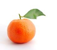 Naranja de la clementina imagen de archivo