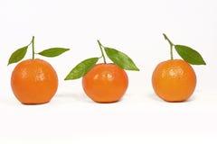 Naranja de la clementina Foto de archivo libre de regalías