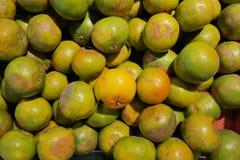 Naranja de la mandarina Fotos de archivo