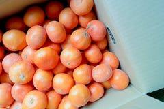 Naranja de la satsuma Foto de archivo libre de regalías