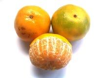 Naranja del árbol Foto de archivo