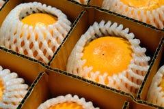 Naranja del primer en caja Foto de archivo