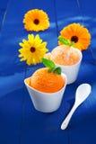 Naranja del verano y helado del mango Fotos de archivo