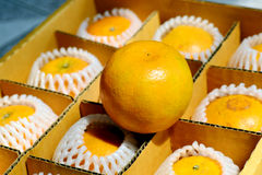 naranja en caja Fotos de archivo