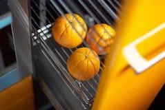 Naranja en cocina en refrigerador Imagen de archivo libre de regalías