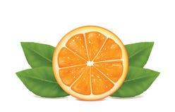 Naranja en el fondo blanco imagen de archivo libre de regalías