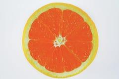 Naranja en el fondo blanco Fotos de archivo
