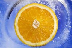 Naranja en el hielo p5 Imagenes de archivo
