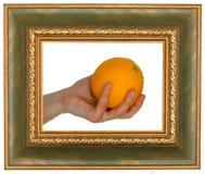Naranja en marco Imagen de archivo libre de regalías