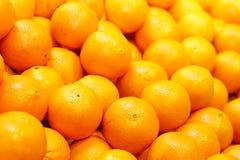 Naranja fresca para el jugo Fotografía de archivo libre de regalías