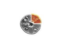 Naranja gris en blanco aislada imagen de archivo libre de regalías