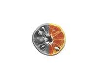 Naranja gris en blanco aislada fotografía de archivo